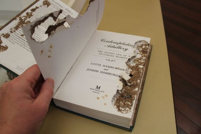 Book showing extensive silverfish damage